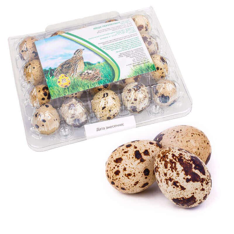 яйца перепелиные пищевые лоток 20шт new